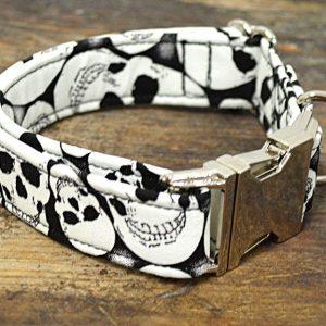 Collar perro Calaveras