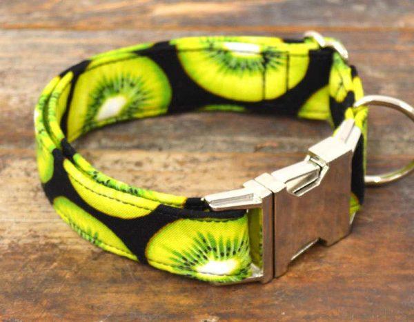 Collar perro Kiwi