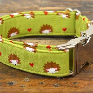 Collar perro Erizos